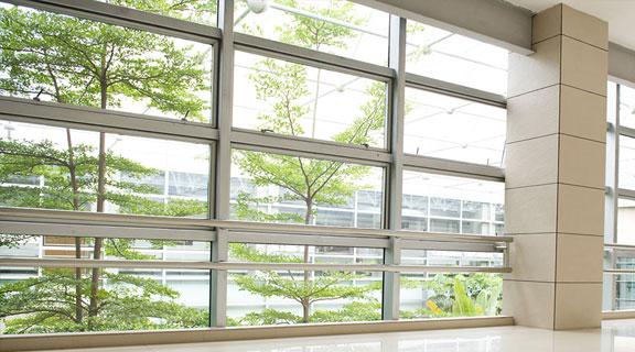 Aluminum Doors & Windows